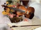 ViolineAC